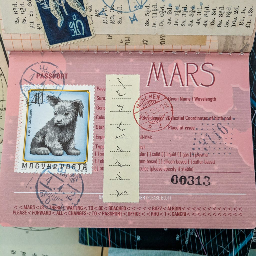 The Mars passport opened to the identification page