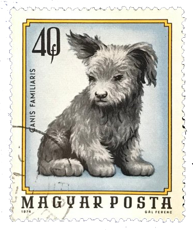Hungarian postage stamp with an illustration of a dog